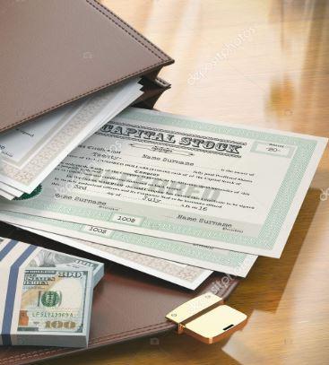 100 x A5 Plain documento chiaro racchiusa WALLET